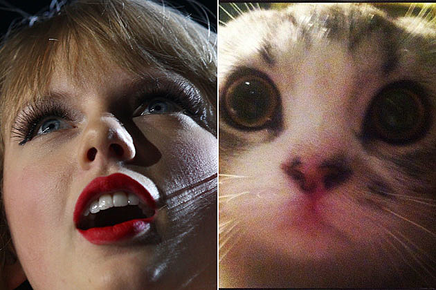 Taylor Swift, Meredith