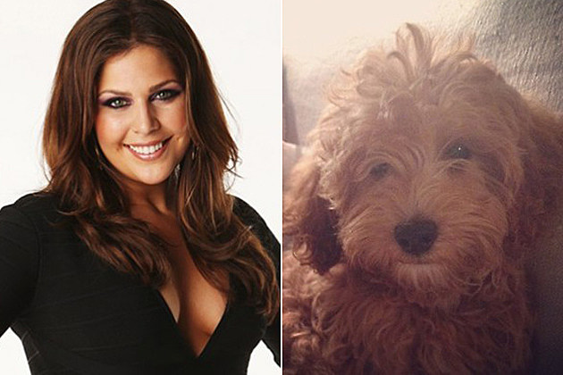 Hillary Scott Puppy Baker