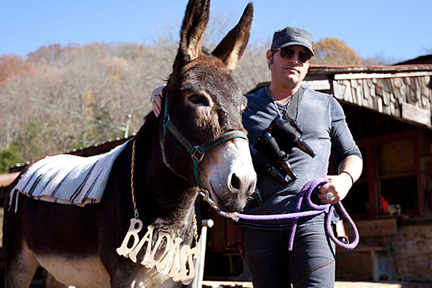 Niemann Donkey