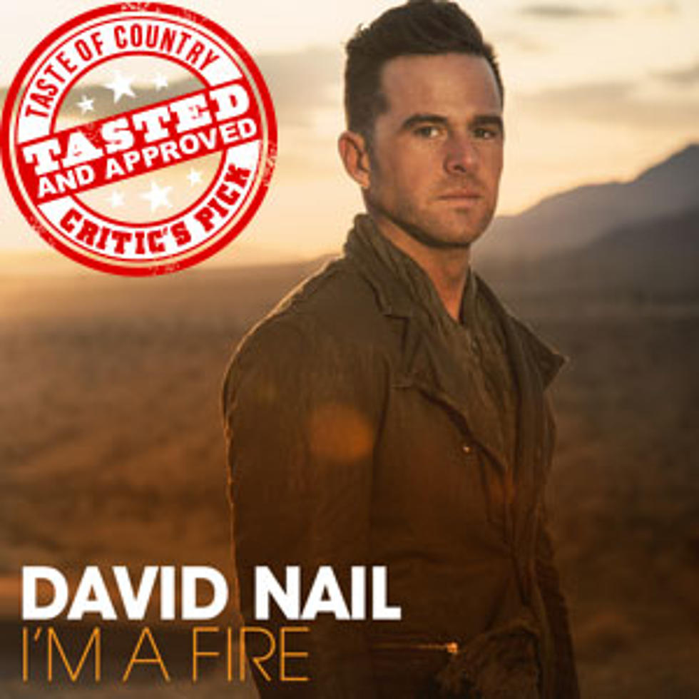 Album Spotlight: David Nail, \'I\'m a Fire\' - ToC Critic\'s Pick