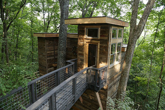 Brian Kelley Tree House